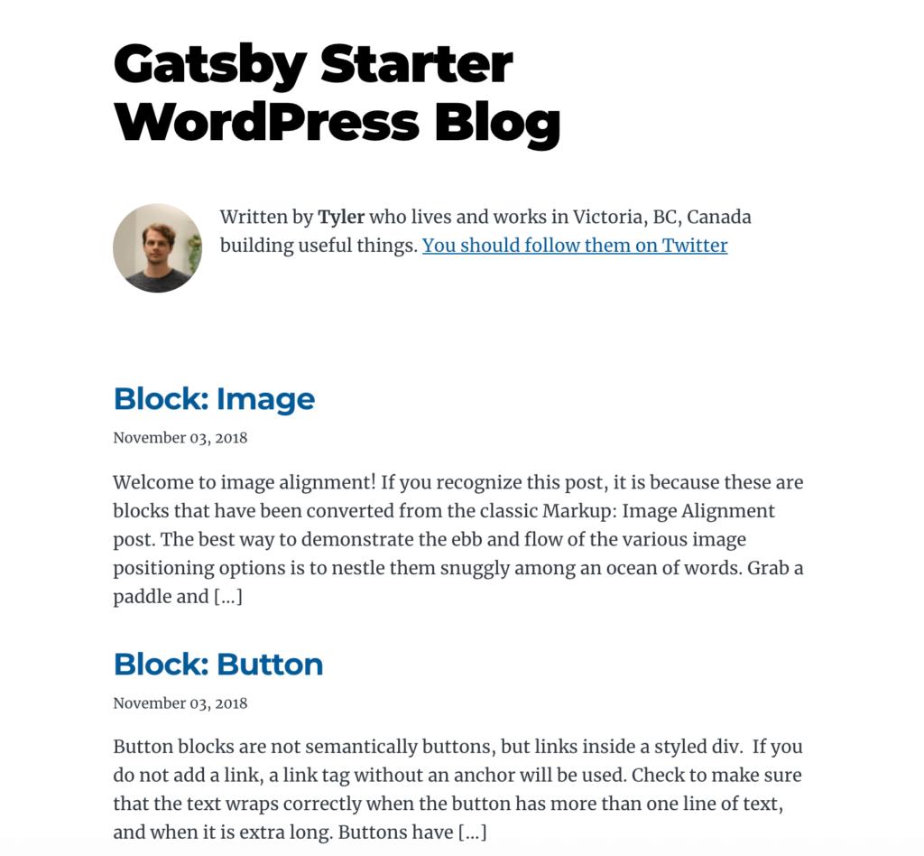 توسعه و طراحی وب سایت با گتسبی